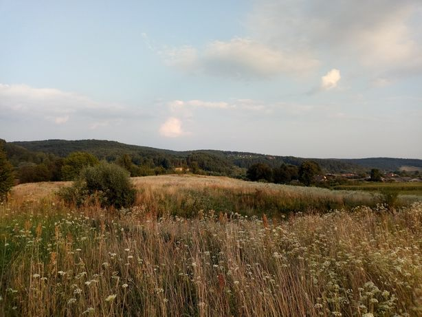 Ділянка в гарному затишному місці з краєвидом на сосновий ліс