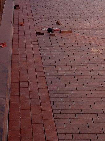 Укладка тротуарної плитки.