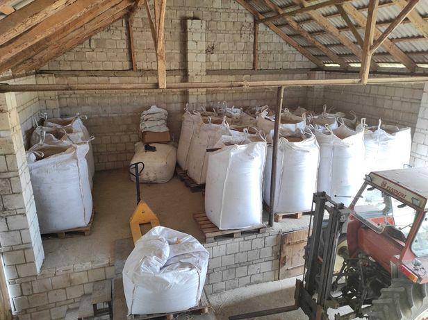 Pszenżyto, suche, bez żyta, 26-27 ton, w big bagach, lubelskie