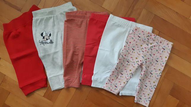 Spodnie, dresy, leginsy