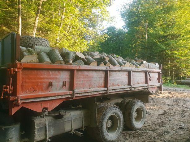 Поодам дрова твердої породи