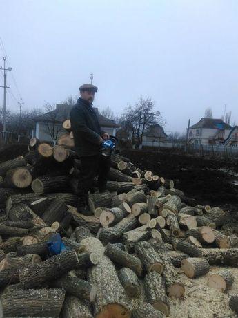Порезка дров, бензопила, электропила