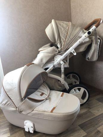Детская универсальная коляска 2в1 Adamex Massimo+ПОДАРОК прогулка Vega