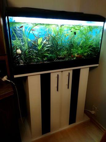 Akwarium 112 l z wyposażeniem i rybami