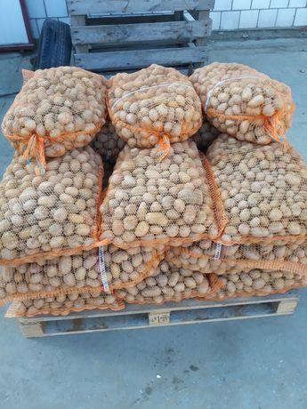 Ziemniaki paszowe pakowane 25 kg