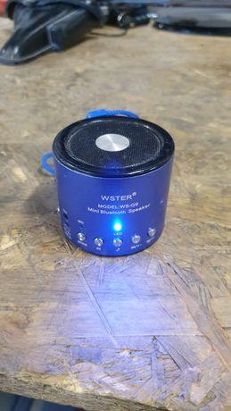 Głośnik bluetooth wester