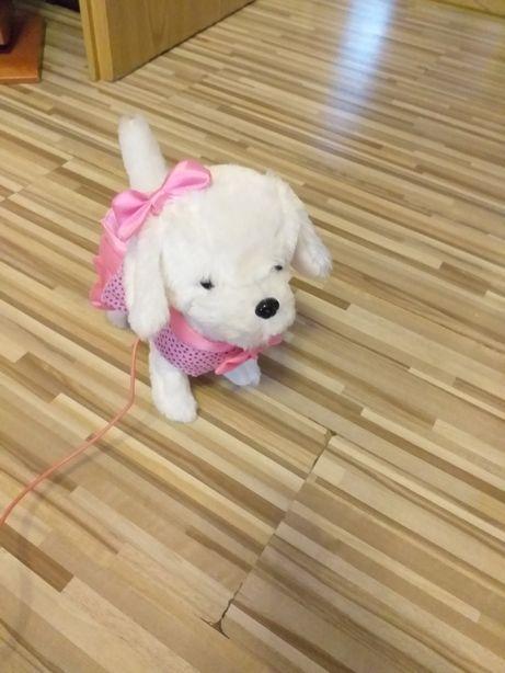 Piesek - który szczeka i chodzi