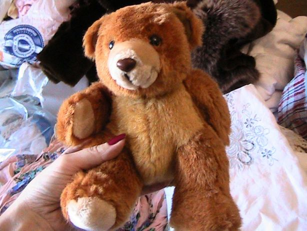 рыжий медведь