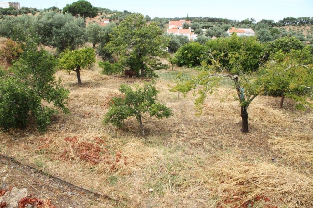 Horta de Campianos