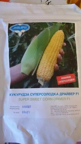 Продам семена суперсладкой кукурузы ДрайверF1 -3000шт