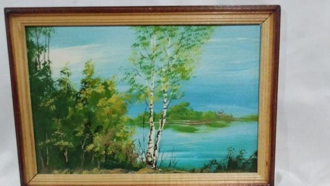 Картина маслом 23 х33 см. в деревянной рамке.