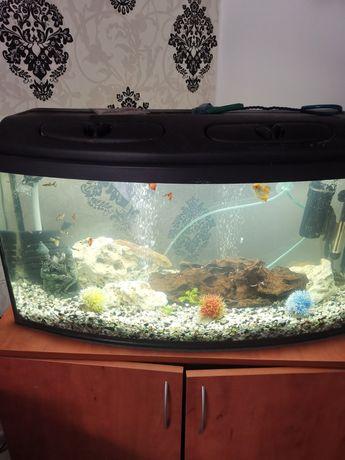 Akwarium 120l profilowane