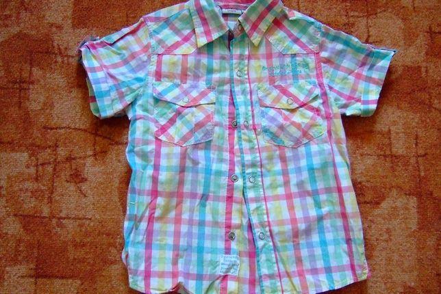 літня сорочка хлопчику 4 років
