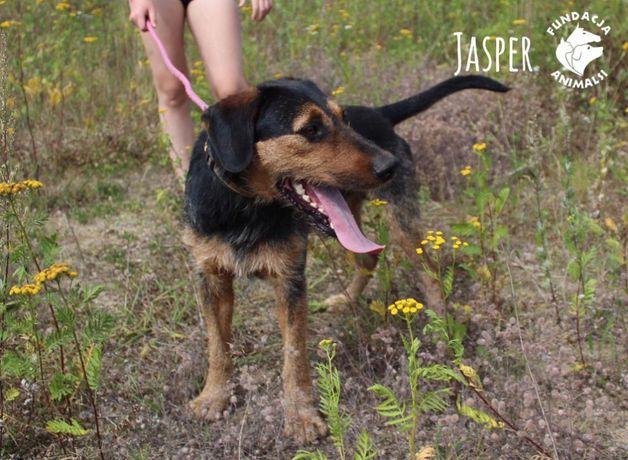 Jasper aktywny młodzieniec