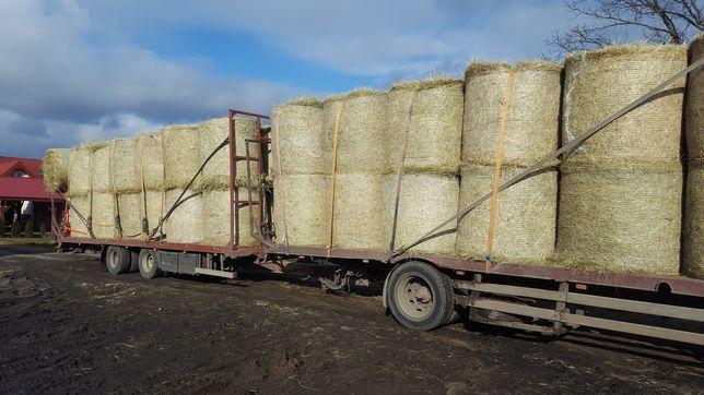 Siano bardzo dobrej jakości dla koni 130x120 sianokiszonka # transport