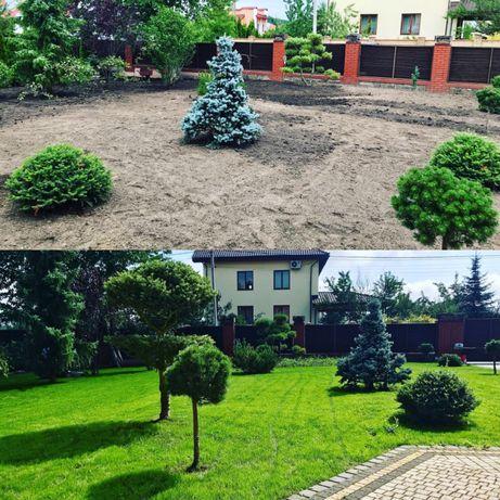 Ландшафтний дизайн, 3d-візуалізація, догляд, газон, мшанка, без фірми
