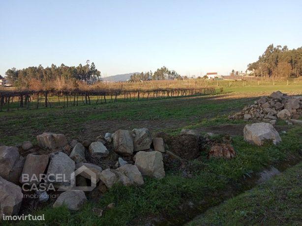 Terreno agrícola em Areias de Vilar - Barcelos