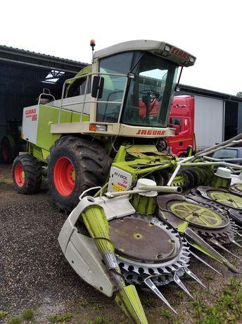 Zbiór kukurydzy, koszenie Claas jaguar 880 4x4, transport maszyn!
