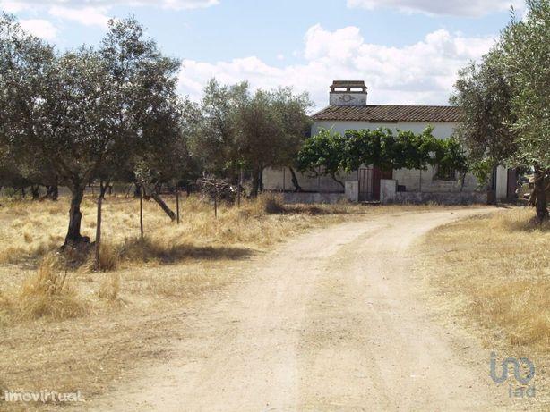 Terreno - 5300 m²