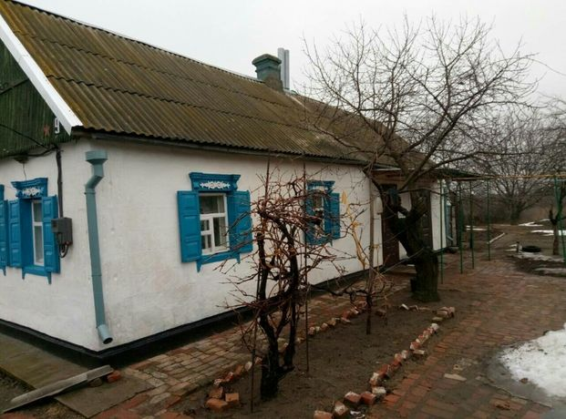 Дом в с. Васильковка