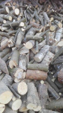 drewno opałowe bukowe, buk