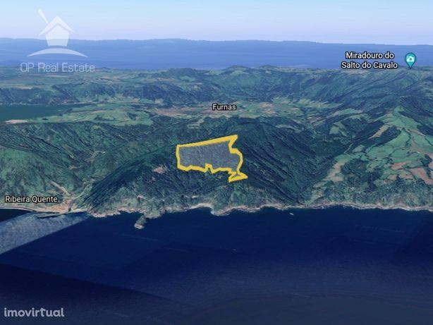 Terreno de Mata 30,33(ha) situado no Agrião a Sul do Cami...
