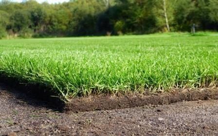 Trawa z rolki rolce wykładanie ogrodów koszenie trawników