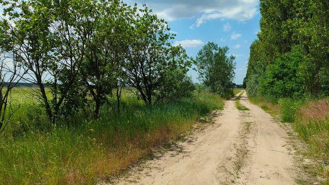38 соток в перспективному районі с. Білогородка, сади