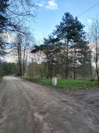 Działka Rolno-Leśna Borków  k.Kołbieli