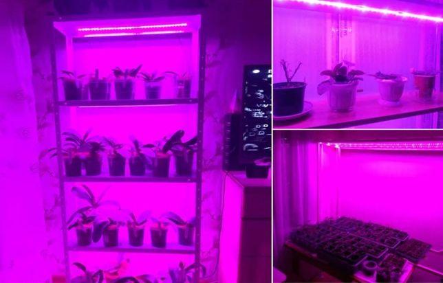 Full spectrum taśma LED GROW uprawa roślin 2m