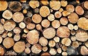 Продам дрова фруктових дерев
