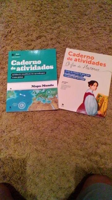 Livros escolares 8°ano de actividades