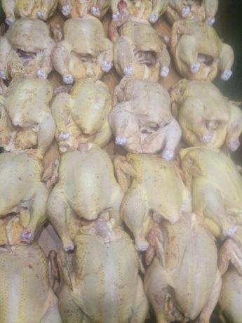 Домашняя курица бройлер вырощенная на натуральных кормах,мясо,курятина