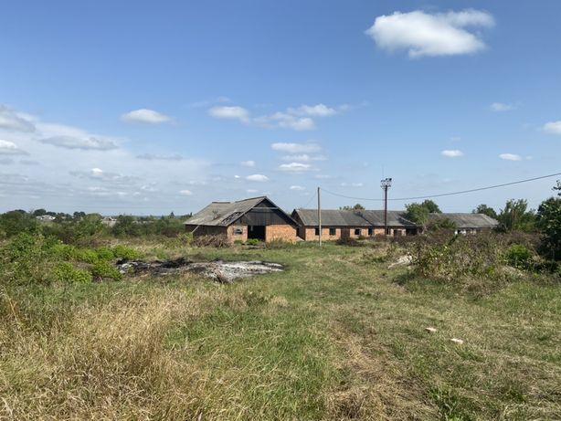 Продам 3 приміщення ферму стайня пилорама