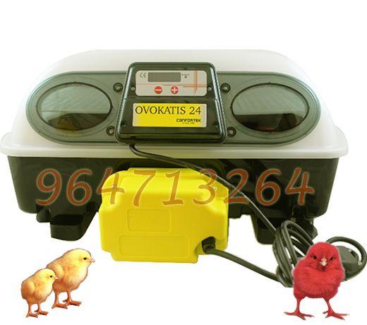 Chocadeira Automática 24 ovos galinha ou 96 codorniz