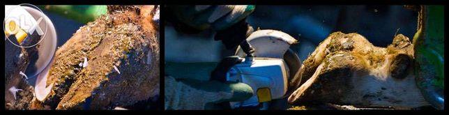 Розчистка ратиць у корів, нетелів ВРХ КРС расчистка копыт