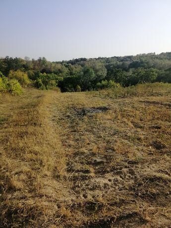 Продам земельну ділянку 0.2847га с. Малий Букрин.