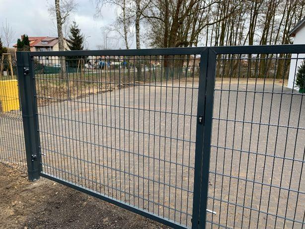Brama ocynkowana malowana-H-1,5 L-4m- Producent-Szczecin- DOSTĘPNA