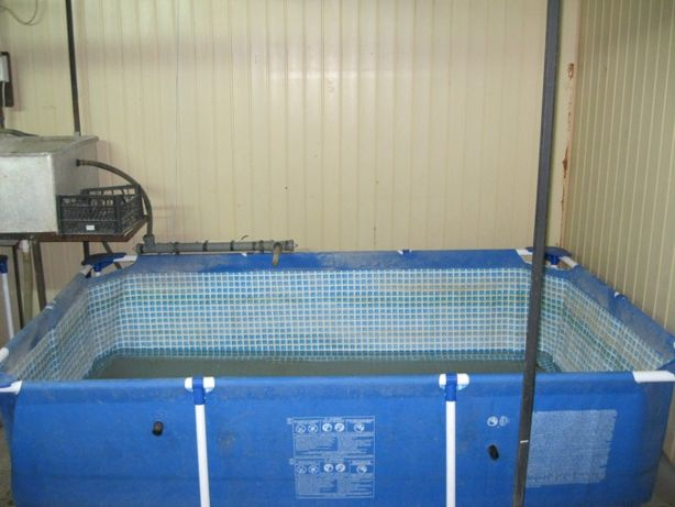 Оборудование для выращивания рыбы, раков, креветок.