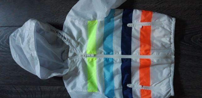 Next j nowa kurteczka bluza roz 98