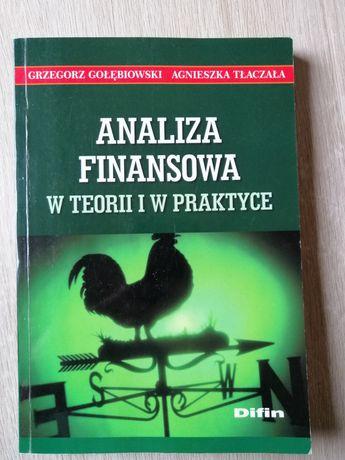 Analiza finansowa w teorii i praktyce