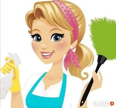 Dokładnie posprzątam Twój dom, mieszkanie, umyję okna, wyprasuję.