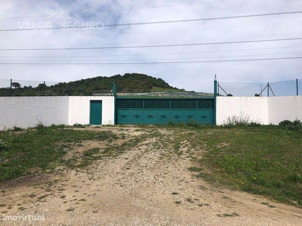 Terreno Agrícola em Trancoso, São João dos Montes