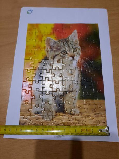 Puzzle do gato bebé