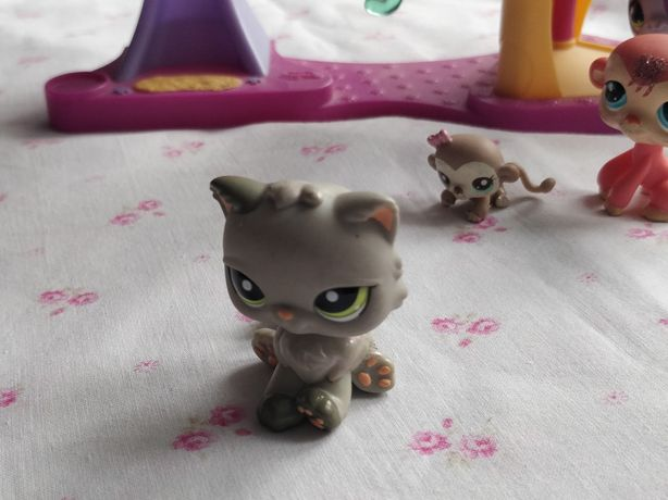 Littlest Pet Shop - LPS - Hasbro -  Szary kotek kot Shorthair