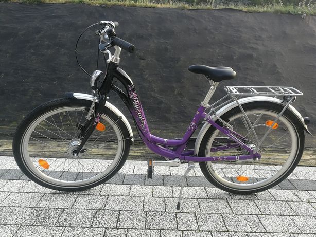 Rower skyride