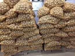 Ziemniak Paszowy Transport