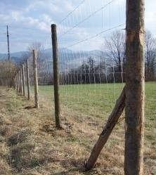 Słupki drewniane ogrodzeniowe