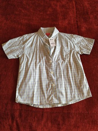 Camisa menino manga curta  Zippy