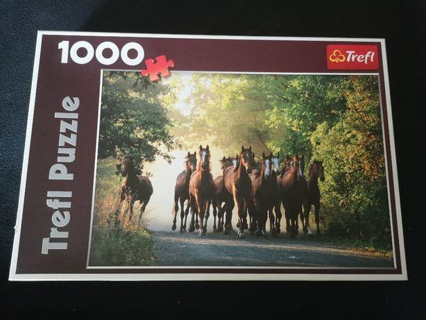 Trefl 1000 elementów - 10168 Ogiery pełnej krwi angielskiej